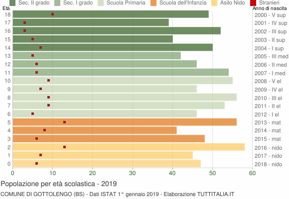 Grafico Popolazione in età scolastica - Gottolengo 2019