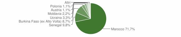 Grafico cittadinanza stranieri - Pertica Bassa 2010