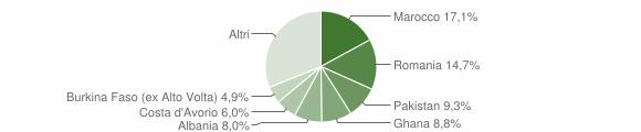 Grafico cittadinanza stranieri - Gavardo 2010