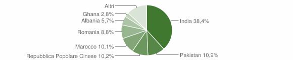 Grafico cittadinanza stranieri - Gonzaga 2019