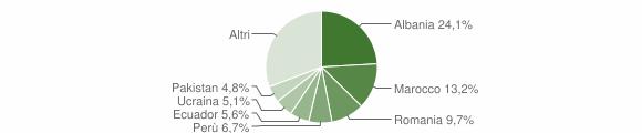 Grafico cittadinanza stranieri - Olgiate Olona 2019