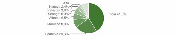 Grafico cittadinanza stranieri - Bolgare 2019