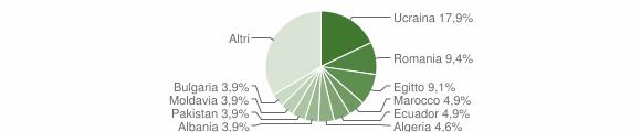 Grafico cittadinanza stranieri - Robecco sul Naviglio 2019