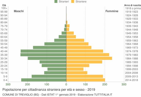Grafico cittadini stranieri - Treviglio 2019