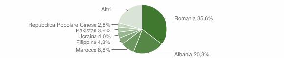 Grafico cittadinanza stranieri - Broni 2019