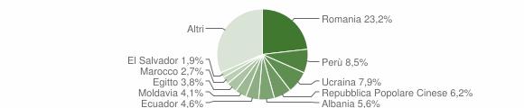 Grafico cittadinanza stranieri - Cernusco sul Naviglio 2019