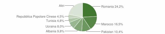 Grafico cittadinanza stranieri - Cogliate 2019