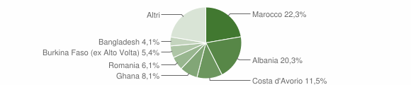 Grafico cittadinanza stranieri - Paitone 2006