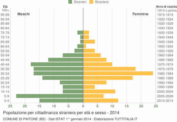 Grafico cittadini stranieri - Paitone 2014