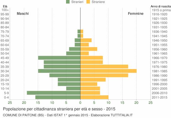 Grafico cittadini stranieri - Paitone 2015