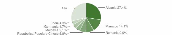 Grafico cittadinanza stranieri - Pozzolengo 2008