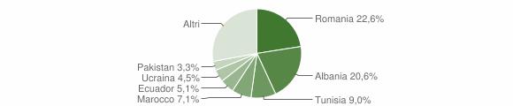 Grafico cittadinanza stranieri - Sannazzaro de' Burgondi 2019
