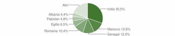 Grafico cittadinanza stranieri - Verolanuova 2015