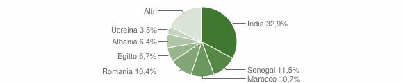 Grafico cittadinanza stranieri - Verolanuova 2017