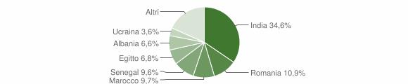 Grafico cittadinanza stranieri - Verolanuova 2018