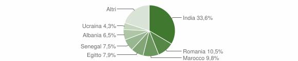 Grafico cittadinanza stranieri - Verolanuova 2019