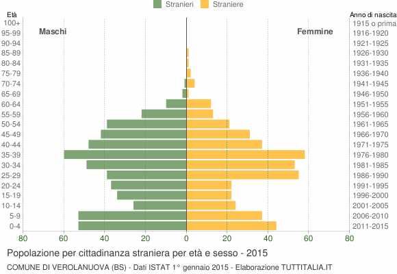 Grafico cittadini stranieri - Verolanuova 2015
