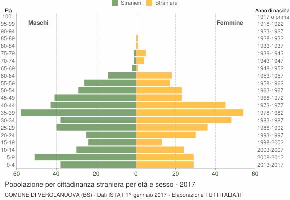 Grafico cittadini stranieri - Verolanuova 2017
