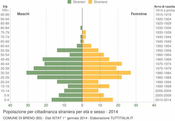 Grafico cittadini stranieri - Breno 2014