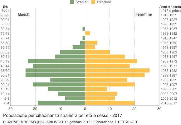 Grafico cittadini stranieri - Breno 2017