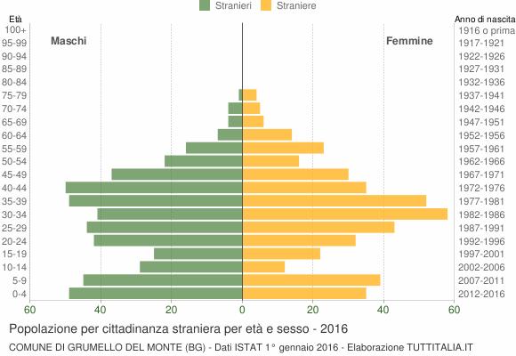Grafico cittadini stranieri - Grumello del Monte 2016