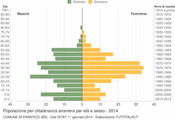 Grafico cittadini stranieri - Paratico 2014