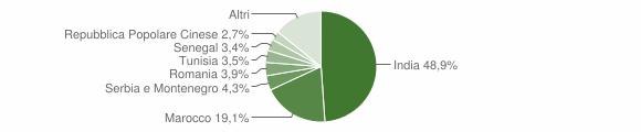 Grafico cittadinanza stranieri - San Paolo 2008
