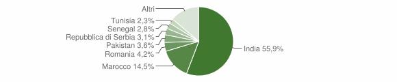 Grafico cittadinanza stranieri - San Paolo 2011