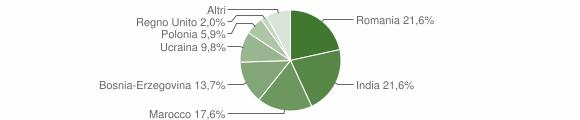 Grafico cittadinanza stranieri - Sellero 2010