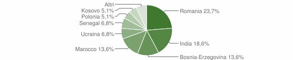 Grafico cittadinanza stranieri - Sellero 2013