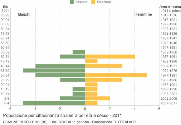 Grafico cittadini stranieri - Sellero 2011