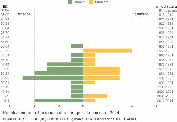 Grafico cittadini stranieri - Sellero 2014