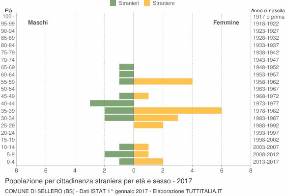 Grafico cittadini stranieri - Sellero 2017