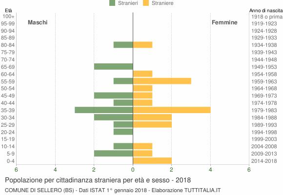 Grafico cittadini stranieri - Sellero 2018