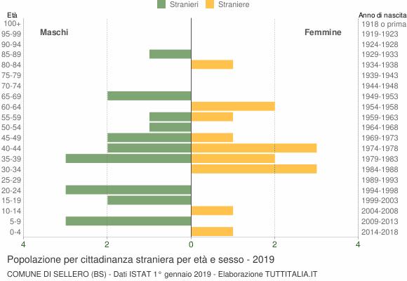 Grafico cittadini stranieri - Sellero 2019