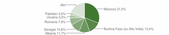 Grafico cittadinanza stranieri - Vobarno 2010