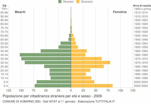 Grafico cittadini stranieri - Vobarno 2009
