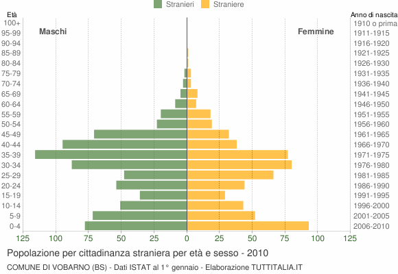 Grafico cittadini stranieri - Vobarno 2010