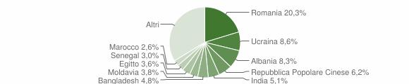 Grafico cittadinanza stranieri - San Martino Siccomario 2019
