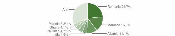 Grafico cittadinanza stranieri - Bedizzole 2010