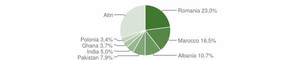 Grafico cittadinanza stranieri - Bedizzole 2012