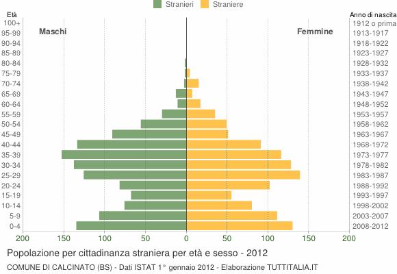 Grafico cittadini stranieri - Calcinato 2012
