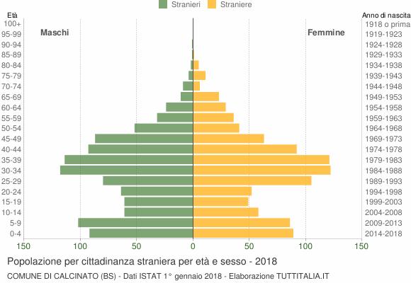 Grafico cittadini stranieri - Calcinato 2018