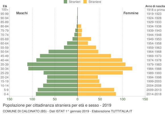 Grafico cittadini stranieri - Calcinato 2019
