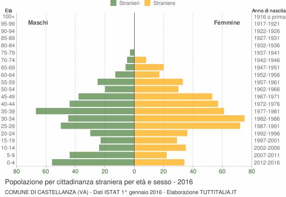 Grafico cittadini stranieri - Castellanza 2016