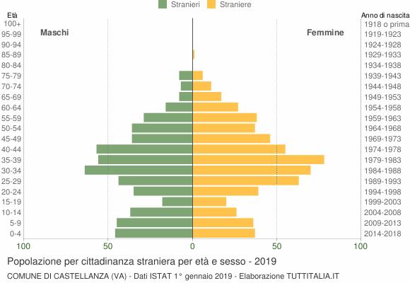 Grafico cittadini stranieri - Castellanza 2019