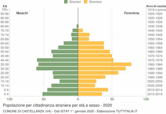 Grafico cittadini stranieri - Castellanza 2020