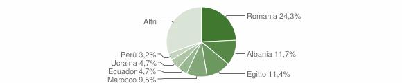 Grafico cittadinanza stranieri - Melegnano 2019