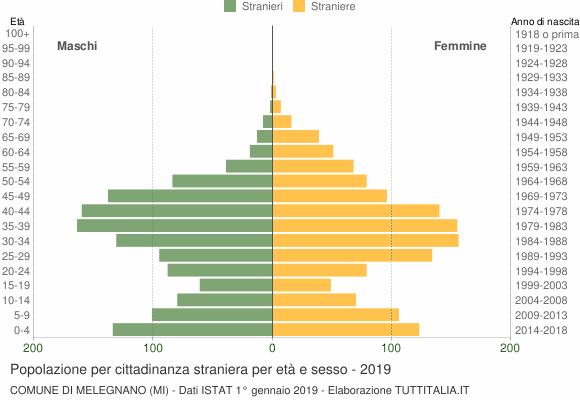 Grafico cittadini stranieri - Melegnano 2019