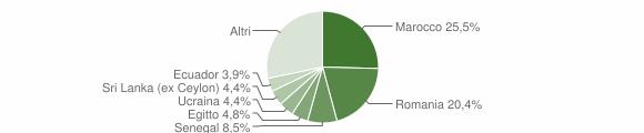 Grafico cittadinanza stranieri - Mezzago 2019